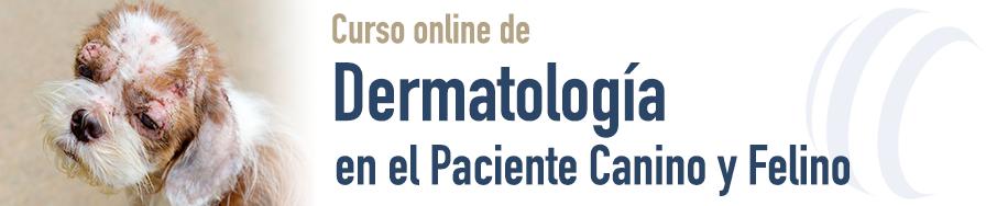 Dermatología en el Paciente Canino y Felino