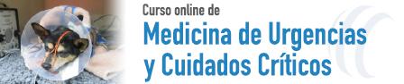 CURSO ONLINE DE MEDICINA DE URGENCIAS Y CUIDADOS CRÍTICOS