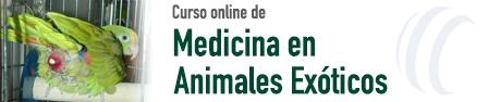 Medicina en Animales Exóticos