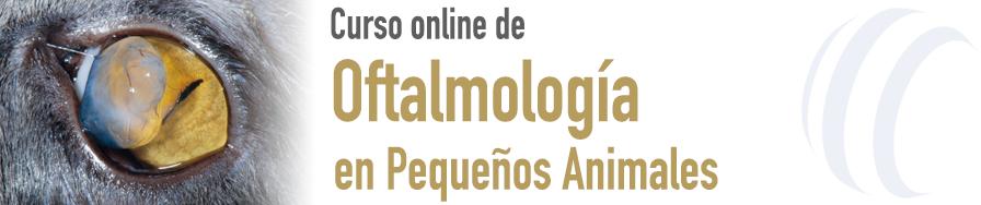 Oftalmología en el Paciente Canino y Felino